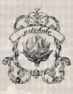 Vintage artichoke illustration digital download: Image No. 503, Commercial and Personal Use, image transfer, printable artwork