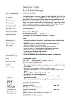 marketing manager resume example cv template skills india sales