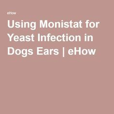 how to get rid of yeast on dogs skin