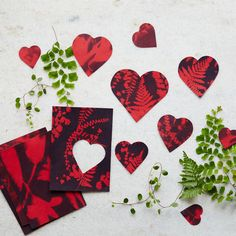A sun printed Valentine how-to, now on the blog. http://www.shopterrain.com/article/sunprint-heart-valentines