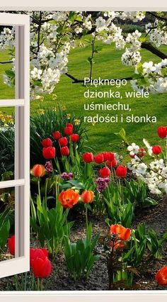 Outdoor Structures, Plants, Coffee, Flower Vases, Windows, Good Morning, Kaffee, Cup Of Coffee, Plant