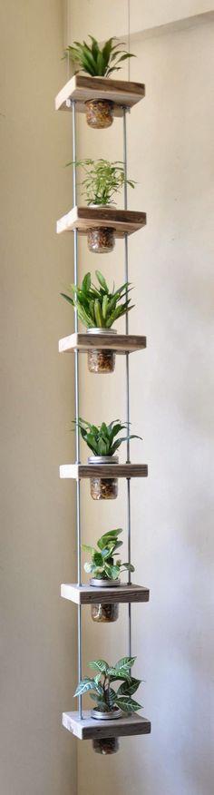 Herb Hanging Mason Jars