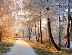 Save On Psychic Readings at Oranum extra coupon: Off your order from jcariel and Bonus 80 Credits. Get special BONUS after you purchase your package Free Psychic, Psychic Readings, Life Is Beautiful, Netherlands, Sunrise, Country Roads, Winter, Nature, Gouda