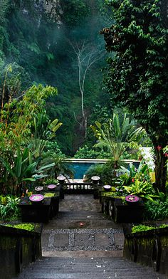 Bagus Jati Health and Wellbeing Spa Retreat, Ubud Bali - The earth here blossoms with indigenous fruits, organic vegetables, flowers and herbs, many of which are also used in our spa treatments for medicinal healing... #relax #spa #destinations