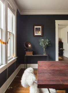 Tour a Colorful, Warm Modern Memphis Bungalow - Decoration Ideas Dining Room Walls, Dining Room Design, Living Room Decor, Bungalow Dining Room, Living Area, Dark Walls Living Room, Bungalow Decor, Interior Wall Colors, Room Wall Colors