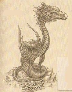 png by Douglas Carrel Realistic Dragon Drawing, Cute Dragon Drawing, Dragon Sketch, Drake Dragon, Clay Dragon, Dragon Pictures, Cute Dragons, Fantasy Inspiration, Magical Creatures