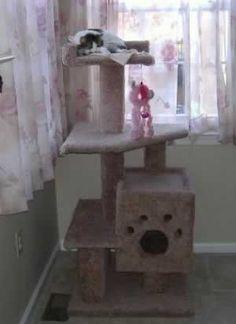 DIY Cat Furniture ....Hmm...I Weiner id I could get Brandon to make that