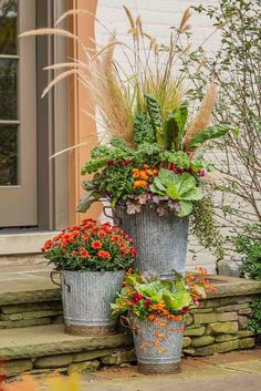 Fall Containers that Pop This trio of containers offers a mix of fall colors and textures yet doesnt overwhelm Gray galvanized metal containers and a mediumsize pot fille. Fall Containers, Metal Containers, Succulent Containers, Ornamental Cabbage, Fall Planters, Autumn Garden, Plantation, Container Gardening, Vegetable Gardening