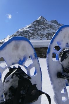 Snowshoes tours are the best opportunity for mountain lovers to get in touch with the pure nature of Stelvio National Park. Winter Season, Mount Everest, Opportunity, National Parks, Environment, Lovers, Italy, Touch, Snow