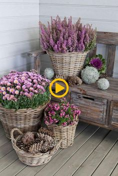 15 Unique and Beautiful Container Garden Ideas-Front Porch Decor-Wicker Basket G… - Garden Decor Ideas Patio Decorating Ideas On A Budget, Porch Decorating, Decor Ideas, Outdoor Garden Decor, Diy Garden Decor, Potted Mums, Outdoor Cushions And Pillows, Container Gardening, Creative