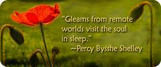 With ties to the realm of dreams, poppy symbolism is both potent and fascinating. Check out a few symbolic meanings of poppies here.