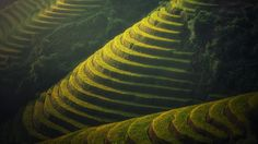 Oddly satisfying rice terraces