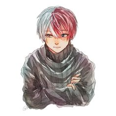 My Hero Academia - Todoroki Shouto