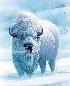 Great White Buffalo: