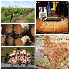 Texas Day Trip: Messina Hof Winery and Bernhardt Winery
