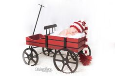 Christmas newborn picture