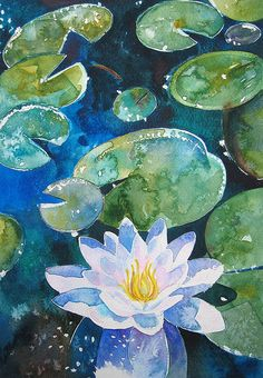 Water Lily by Francesca Whetnall #Art #Painting