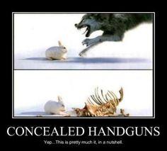 (gun control self defense second amendment obama reid feinstein democrats)