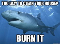 too lazy to clean your house? burn it