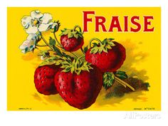 French Strawberries Posters at AllPosters.com