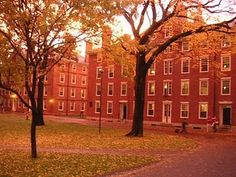 Harvard in autumn