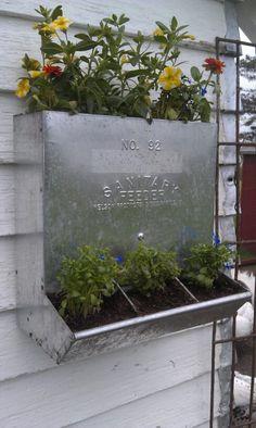 Hawk Valley Garden...chicken feeder planter I made today