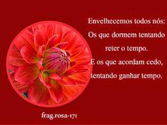 Meus Poemas  Minhas Reflexões (R.R.): N.22 Fragmento (171)  ( envelhecemos todos nós.......