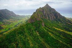 @kualoaranch on Oahu. Kaaawa Valley on the left aka Hawaii's backlot. Setting for Lost and Jurassic Park. I participated in a ground tour that covered everything in this frame guided by the owner. I'll post another shot that covers the east side of the ranch. #visitoahu #lethawaiihappen by adamsenatori