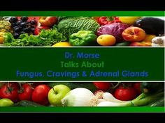 Dr. Morse Talks About Fungus, Cravings and Adrenal Glands - YouTube