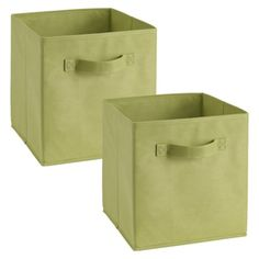 ClosetMaid Cubeicals Fabric Drawers - 2 Pack  (4 pack for the entryway, I think Kiwi will match the green on the carpet desgin)