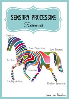 Sensory Processing Resources! WOW! What a great place to start when looking for resources about Sensory Processing Disorder!