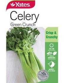 A crisp and crunchy popular salad variety. Long stringless stalks which can be harvested as desired. Vegetable Garden, Celery, Crisp, Seeds, Vegetables, Green, Food, Vegetables Garden, Essen