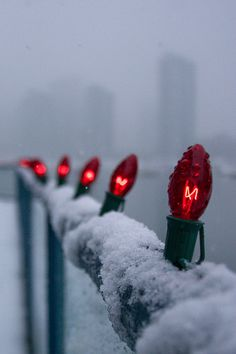 Lights in the Snow.. Granville Island, Vancouver, Canada