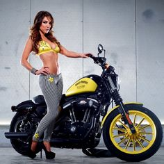 Both Harley Davidson and Rockstar Energy Drinks are big companies in their own field, with plenty of fans. With Rockstar involved in events like MotoGP and Harley Davidson Sportster, Sportster Iron, Lady Biker, Biker Girl, Rockstar Energy, Motorbike Girl, Motorcycle Girls, Star Wars, Hot Bikes