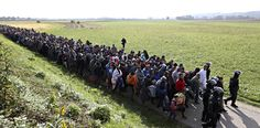 Setembre 2015. Els refugiats principalment sirians, però també d'altres nacionalitats, han esdevingut notícia als informatius. Onades de persones, grans i menudes, homes i dones, arrisquen la seua vida i intenten arribar com poden a Europa, sobretot a Alemanya, per viure en pau, com no poden fer-ho als seus països.  Refugiats són escortats per la policia eslovena. SRDJAN ZIVULOVIC/ REUTERS 201511