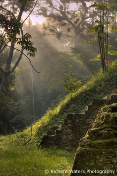 Ruins (Guatemala) 'Tikal - This regional superstar is well on the tourist trail but totally worth the visit for its soaring, jungle-shrouded temples.' http://www.lonelyplanet.com/guatemala?utm_content=buffer128fc&utm_medium=social&utm_source=pinterest.com&utm_campaign=buffer
