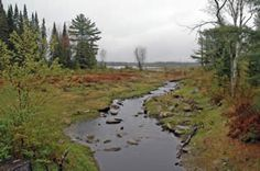 Johns River flowing out of Cherry Pond (photo by Ben Kimball for the NH Natural Heritage Bureau)