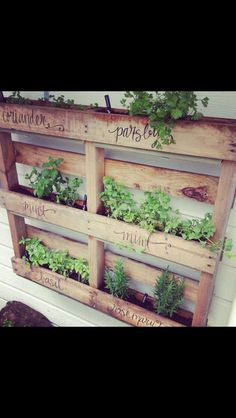 For the garden wall.  This would be a great idea around a spa; you could smell the herbs while soaking!