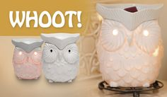Scentsy ... August warmer of the month