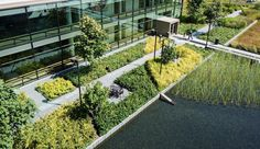 Bill_Melinda_Gates_Foundation-Gustafson_Guthrie_Nichol-ASLA_Award_2014-04 « Landscape Architecture Works   Landezine