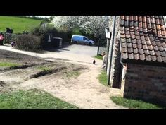Sophie and Lily having a great time chasing the chickens at Grimsby community farm in Bristol. Family Video, Bristol, Country Roads, Chicken, Videos, Cubs