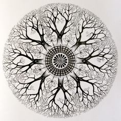@Ashlee Outsen Outsen Mazzei this is totally what i want! Not actually a mandala but even better