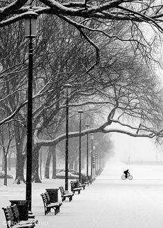 Bicyclist DC Snow Black White Winter by RobinBarrettPhoto Dc Photography, Winter Cycling, Bicycle Art, Snow Scenes, Cycling Art, Winter Beauty, Black And White Photography, Touring, Winter Wonderland