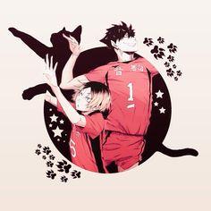 Boys. Cat. Paws. Kuroo. Kenma. Haikyuu!