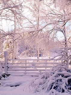 Winter day in the country -