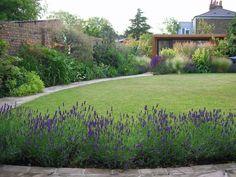 View from the dining terrace across the garden Eco Garden, Lawn And Garden, Garden Ideas, Evergreen Landscape, Family Garden, Garden Office, Small Garden Design, West London, Outdoor Spaces