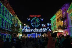 Hollywood Studios - Osborne Lights - Photo by Nomad Seeks Home