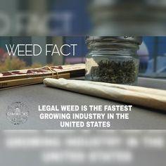One of the fastest growing industry   #maryjane #marijuana #cannabis #weed #girlswhosmoke #bud #hightimes #cannabiscommunity #rawlife #girlswhosmokeweed #joint #ganja #stonernation #pot #stoners #stonerchick #highsociety #thc #420 #weedstagram420 #highlife #blunts #stonergirls #bongbeauties #ganjagirls #weedporn #wakenbake #bong