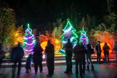 10. LA Zoo Lights -- Los Angeles Zoo and Botanical Gardens