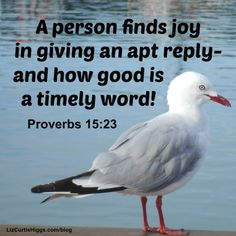 """#49 """"Want more joy in your life? Speak words that bless others."""" http://www.lizcurtishiggs.com/2014/01/your-50-favorite-proverbs-49-right-time-right-word/"""